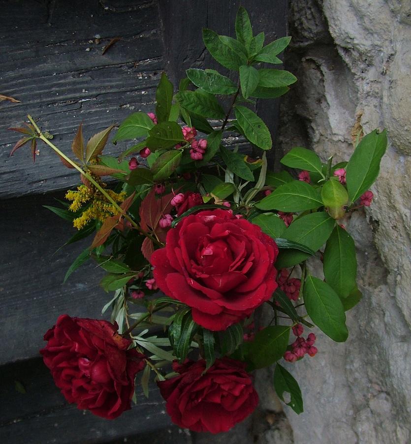 dohliny-kvetiny